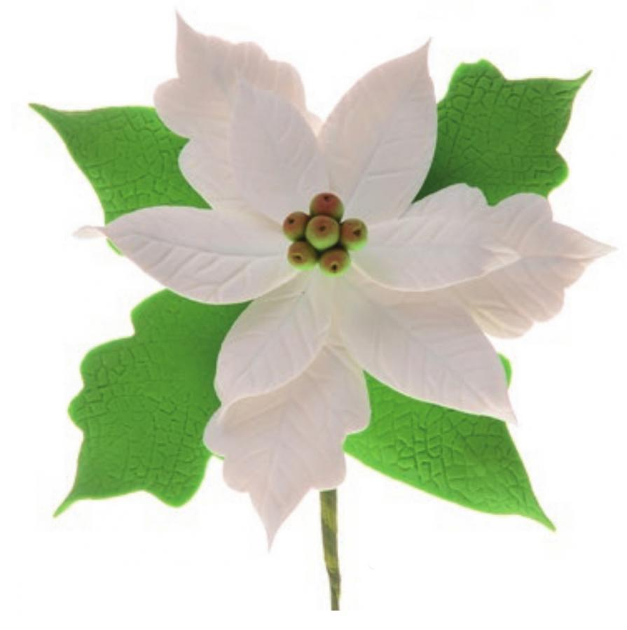 Stella Di Natale Bianca.Dettagli Su Fiore Stella Di Natale Bianca In Zucchero O11 Cm Decorazione Natalizia Per Tor