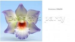 ORCHIDEA LILLA DIAMETRO CM 10X14H